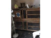 Large two storey rabbit hutch