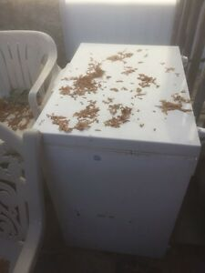 Free smal freezer (scrapers)