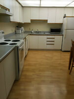 House for rent in Waterloo Village
