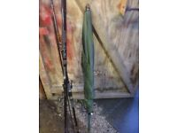 Carp rods and fishing umbrella