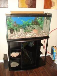 Aquarium, stand, pump, light and all other accessories.