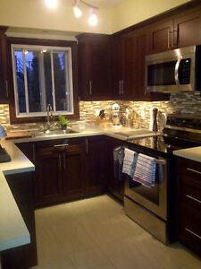 Superbe bas duplex 5.5 rénové, XL terrasse, 2 étages +garage