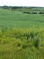 Looking for land for sale esterhazy rocanville langenburg area