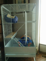 Chinchilla/ferret/rat cage on wheels + accessories