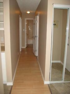 Bright and Large 2 Bedroom Condo for Rent