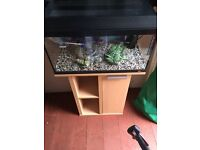 Juwel fish tank with stand and accessories