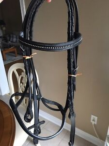 Paddle bridle, leather field boots and riser pad