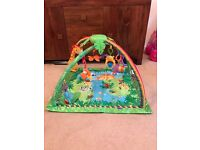 Fisher Price Rainforest Baby Play Gym