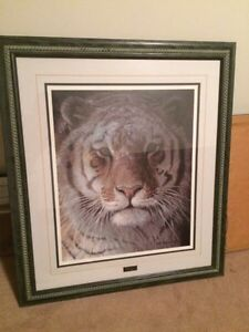 Tiger at dusk by Robert Bateman