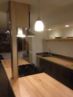 Loft style newly renovated Agricola area apartment