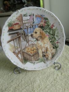 GORGEOUS OLD VINTAGE ROYAL ALBERT BONE CHINA COLLECTIBLE PLATE