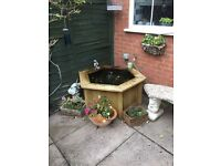 Raised Hexagon Garden Fish Pond £50
