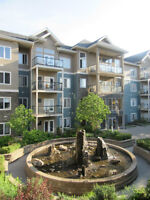 Luxury furnished 2 bed/2 bath condo steps to Whyte Ave w/parking
