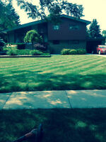 C&R Landscaping ( commercial and residential )