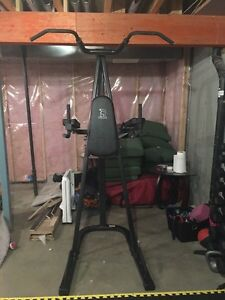 Spartan vo3 power tower $200 Strathcona County Edmonton Area image 1