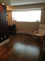 NEWLY REMODELED   2 bedroom condo *NORWOOD FLATS*