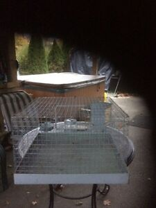 Rabbit Cage  or Ginny pig Peterborough Peterborough Area image 3