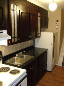 One bedroom Heat and Light Included Apartment