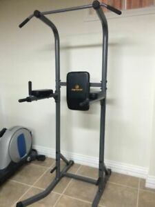 Apex Power Tower Chin Pull Up VKR Dips Push Ups Multi Station