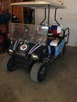 Jets Customized Golf cart