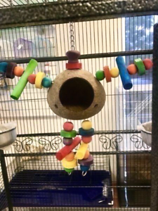 Brand New Toys for Pet, Guinea Pigs, Rats, all bird species fr $4