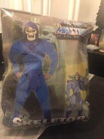 Skeletor He-Man Fancy Dress Costume