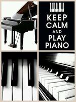 Piano, Violin, Voice, Guitar, Accordion Lessons