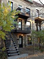 8½ rénové, 3 chambres-Plateau/Mile-End, Métro Laurier-1400pi2