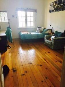 Spacious single bedroom or room for couple 10 mins walk from UNSW Kingsford Eastern Suburbs Preview
