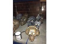 Halloween / concrete Skulls