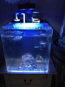 Salt water aquarium cube