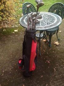 Vintage Golf Clubs with bag and balls Offered here is x17 golf clubs