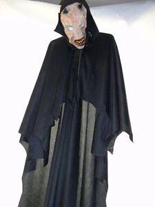 Large costume