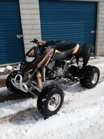 Can am DS650