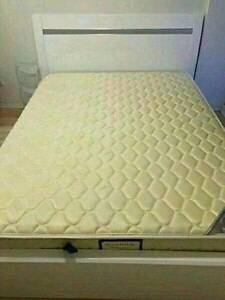 White queen size holstered Gas Lift bed for sale free delivery Narwee Canterbury Area Preview