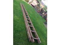 Hardwood Ladders
