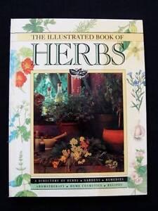 Illustrated Book Of Herbs - Barbara Hey [Hardback] Loganholme Logan Area Preview