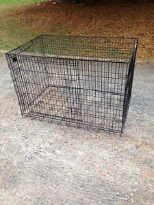 Dog crate for large dog