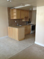 Bright 1 bedroom near Broadway and U of S