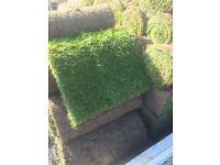 Quality lawn turf, top soil