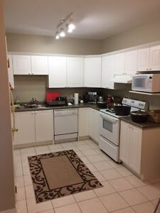 Spacious luxury 2+1 waterloo condo for rent - available Dec 28th Kitchener / Waterloo Kitchener Area image 5