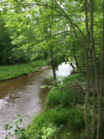 Lovely Riverfront Lots  Pictou Co..5 -8  acres read on!