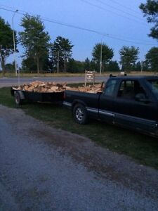 Firewood and Tree Removal Services London Ontario image 9