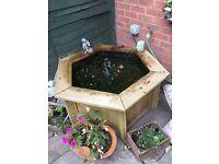 "Hexagon shaped fish pond 45""x45"""