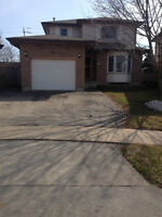 Grimsby - Newly Renovated, Detached, Close to everything