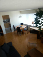 Large, Comfortable & Furnished 1 Bedroom Apartment all-inclusive
