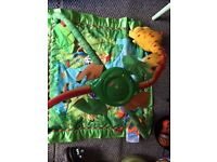 Fisher price jungle gyn