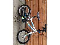 Children's Dawes Blowfish Bike