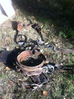 Leather climbing harness and spurs $350.00