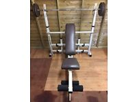 Gold Gym Olympic expandable weights bench.